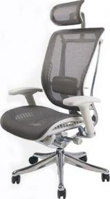 Кресло офисное EXPERT SPRING (HSPM01-G) эргономичное