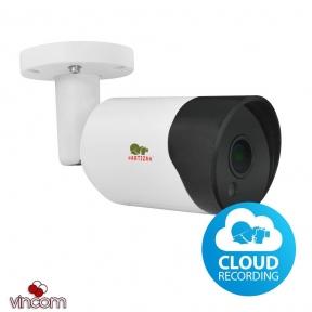 Видеокамера IP Partizan IPO-2SP SE 4.2 Cloud